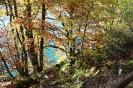 Auvergne_21